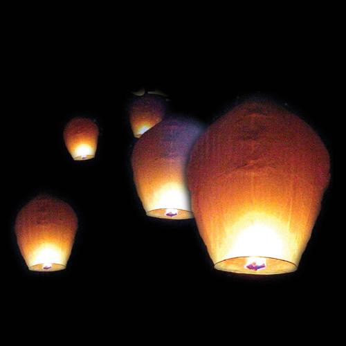 Chinese Lantern 10 Pack